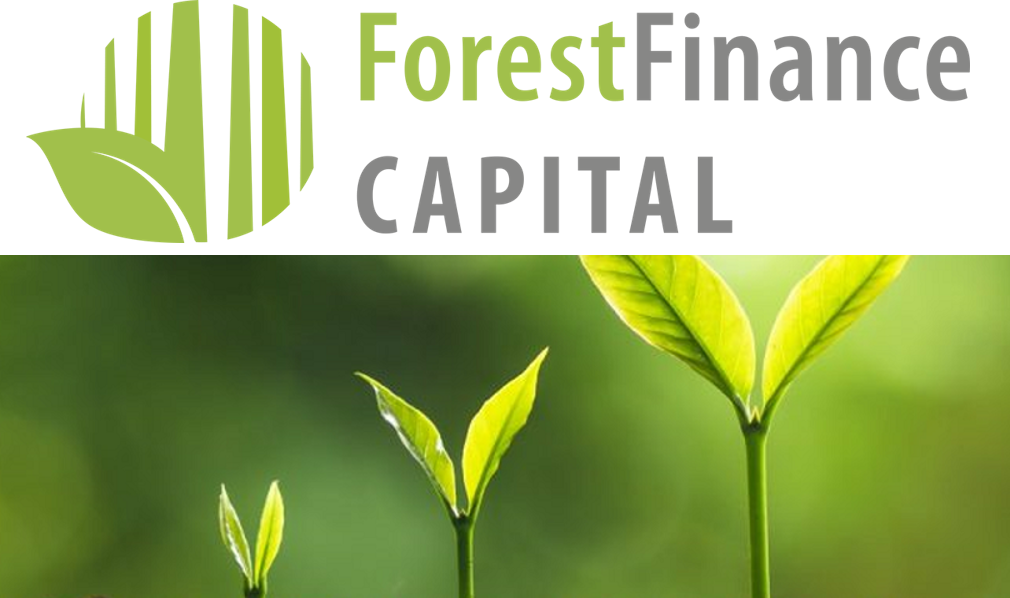 ForestFinance Capital