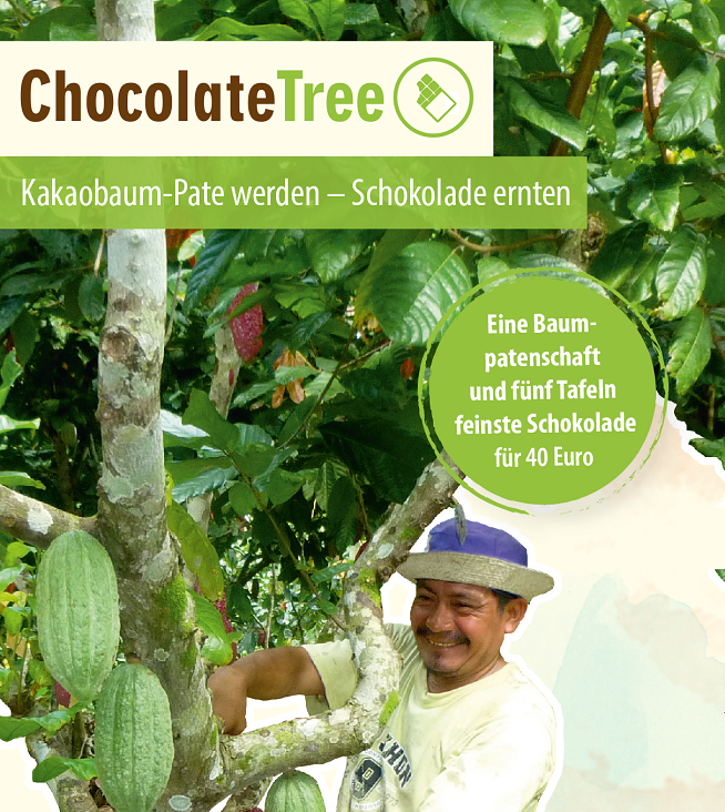 ChocolateTree