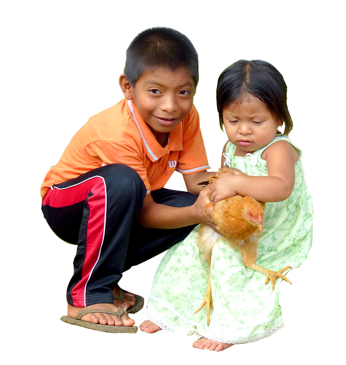 Kids with chicken